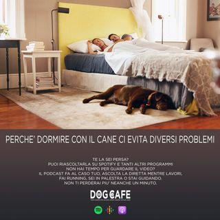 #44 - Perchè dormire con il cane ci evita diversi problemi.