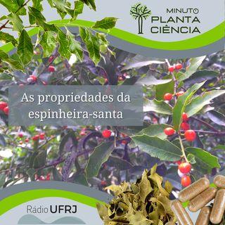 Minuto PlantaCiência - Ep. 12 - As propriedades da espinheira-santa (Rádio UFRJ)