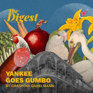 E4: Yankee Goes Gumbo