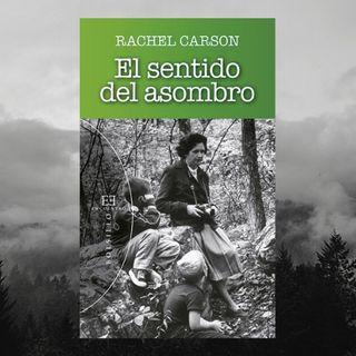 Rachel Carson y el sentido del asombro