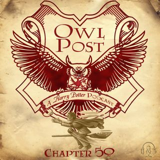 Chapter 050: The Quidditch Final