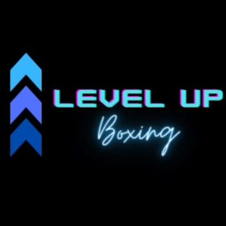 Interview with James DANGER Hollon / Level Up Boxing