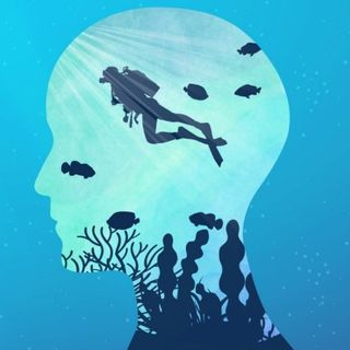 L'effetto Dunning Kruger nella subacquea