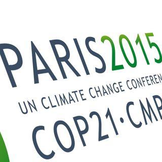 Endangered - In vigore l'accordo di Parigi, ma è solo l'inizio