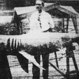 210 - The New Jersey Shark Attacks