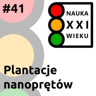 Plantacje nanoprętów