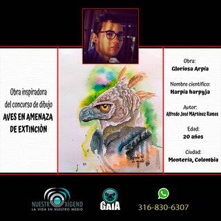 NUESTRO OXÍGENO El arte y la conservación de especies animales - Alfredo José Martínez Ramos