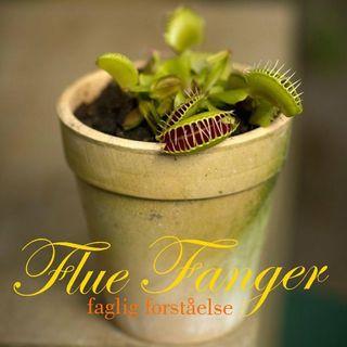 Intro FlueFanger Faglig Forståelse