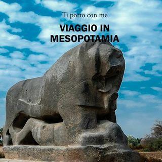 Viaggio in Mesopotamia - 05 I salici di Babilonia