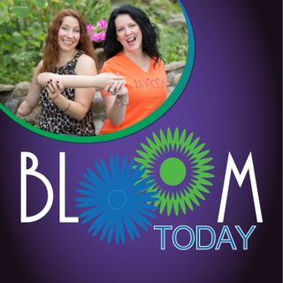Bloom Today - Stopping the Spin Cycle