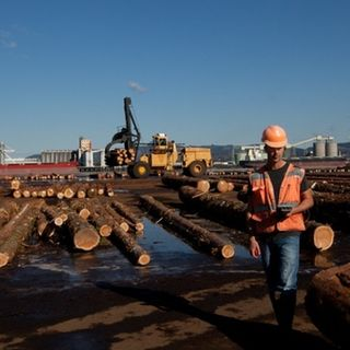 China's Building Boom Revives Northwest Log Export Debate
