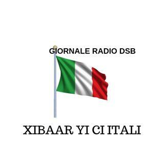 LI CI  DIASPORA BI- avec DIASPORA VISION et RADIO DSB