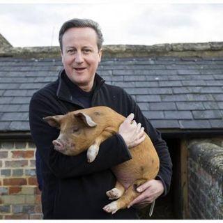 Le accuse a David Cameron su Droghe, sesso e maiali. Poi la promozione della musica dei nostri talenti musicali da tutto il mondo ....