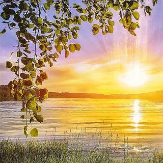 Buongiorno in connessione alla Madre Terra e al Sole