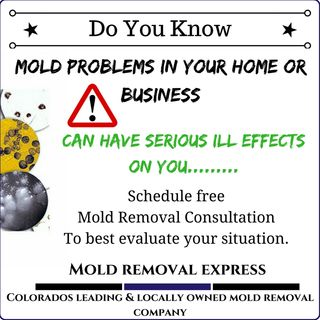 Mold removal is not a do it yourself job | Mold Removal Express