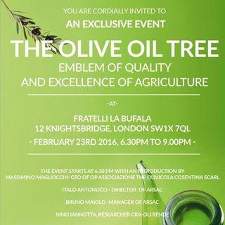 Evento promozione e valorizzazione d'olio extravergine di Calabria