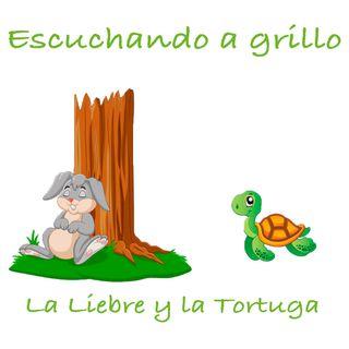 01 La Liebre y la Tortuga