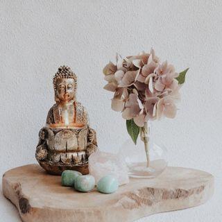 Épisode 8 |  Le karma yoga, l'art de l'action désintéressée