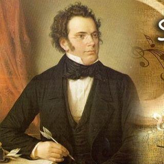 ....Il Pianoforte 23 - Musiche di  Franz Schubert