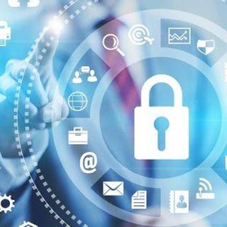 A Função Social da Empresa e o Sigilo de Dados no Brasil
