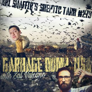 #279: Garbage Dump, USA (@SalVulcano)