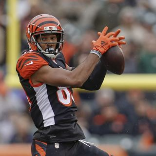 The NFL Show: State of the Franchise the Cincinnati Bengals