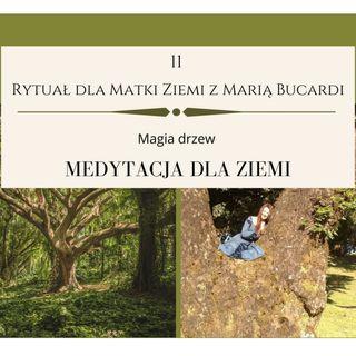Moje sprawozdanie osobiste z 11 Rytuału dla Matki Ziemi - Maria Bucardi 21.08.2013