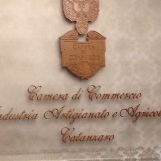 """Daniele Rossi sugli """"inadempimenti"""" della Regione Calabria. La conferenza stampa in diretta dalla Camera di Commercio"""