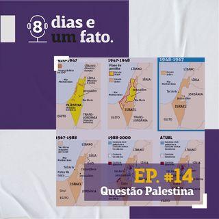 Questão Palestina #14