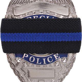 S01E04 - Officer Down