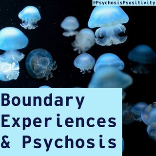 Boundary Experiences & Psychosis