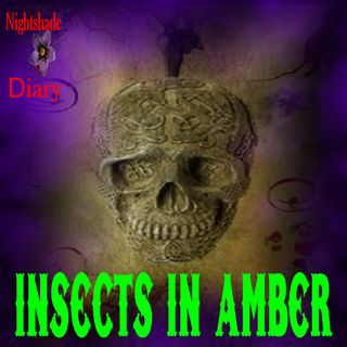 Insects in Amber | Weird Story | Podcast