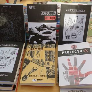 Literatura desde el Biobío