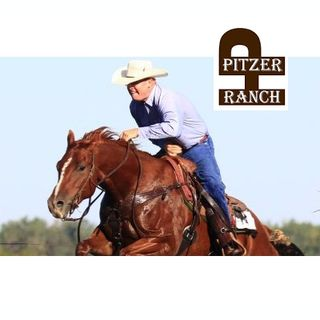Pitzer Ranch Annual Horse Sale