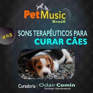 #03 Sons Terapêuticos para Curar Cães | PetMusic
