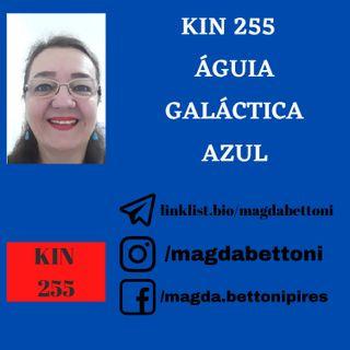 KIN 255 - ÁGUIA GALÁCTICA AZUL - 20ª Onda Encantada do Tzolkin