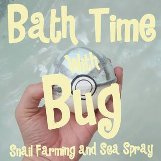 Snail Farming And Sea Spray