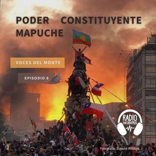 Poder constituyente Mapuche