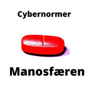 Manosfæren 1: En manderetsaktivist krydser sit spor