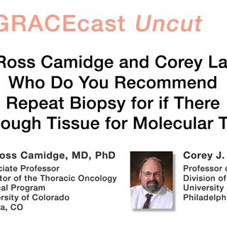 Drs. Ross Camidge and Corey Langer: Who Do You Recommend Repeat Biopsy for if There Isn't Enough Tissue for Molecular Testing?
