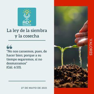 27 de mayo - La ley de la siembra y la cosecha - Devocional de Jóvenes - Etiquetas Para Reflexionar