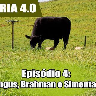Websérie: Agropecuária 4.0 EP 04 - Os segredos da carne de qualidade