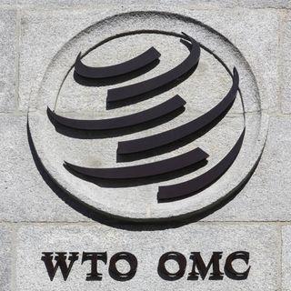 Pongamos a la OMC en su sitio
