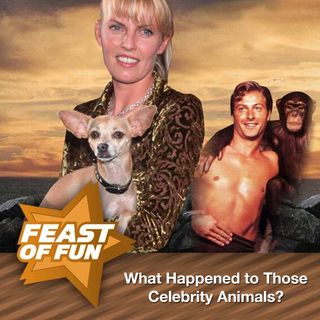 FOF #1646 – Whatever Happened to Those Celebrity Animals?