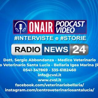Intervista a Radio News24 sulla Chirurgia Veterinaria