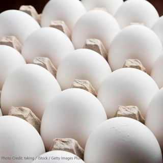 Scrambling for eggs? Volatility in the Egg Market