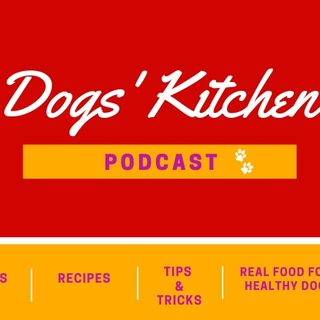 | Episode #4 | Would you eat the same food for 10,12,15 years? Why should your dog?