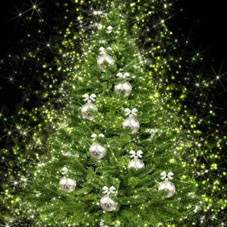 Curiosità sul Natale - la tradizione dell'albero