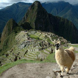 Machu Picchu - İnkaların Kayıp Şehri