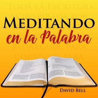 MelP_13-Juan_11_28-29